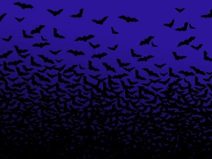 batty wallpaper
